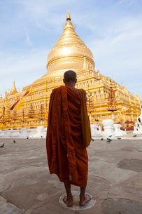 Rear view of monk wearing orange robe standing in front of golden pagoda.の写真素材 [FYI02261411]