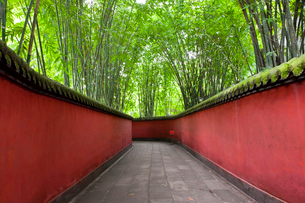 View along walkway with red walls through bamboo forest.の写真素材 [FYI02261427]