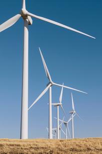 Tall wind turbines in open country farmland in Washington.の写真素材 [FYI02261496]
