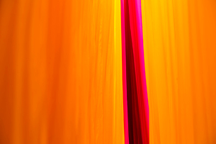 Close up of freshly dyed bright yellow and pink fabric hanging up to dry.の写真素材 [FYI02261510]