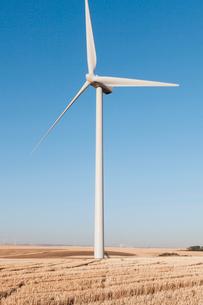 Tall wind turbines in open country farmland in Washington.の写真素材 [FYI02261512]