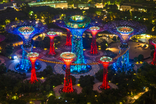 High angle view of illuminated Supertree Grove at Gardens by the Bay, Singapore at night.の写真素材 [FYI02261644]