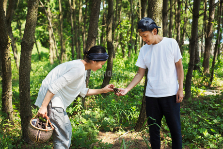 Man and woman carrying basket standing outdoors in a forest, collecting mushrooms.の写真素材 [FYI02261649]