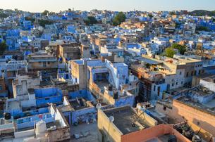 View across the rooftops of Jodhpur, India.の写真素材 [FYI02261869]
