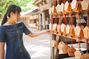 Young woman wearing blue dress looking at wooden fortune telling plaques at Shinto Sakurai Shrine, Fの写真素材 [FYI02261945]