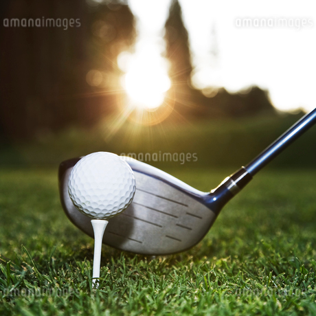 A closeup of a driver and a ball about to be driven on a golf course.の写真素材 [FYI02262170]