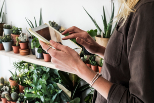 Close up of female owner of plant shop holding digital tablet, a selection of plants on wooden shelvの写真素材 [FYI02262473]