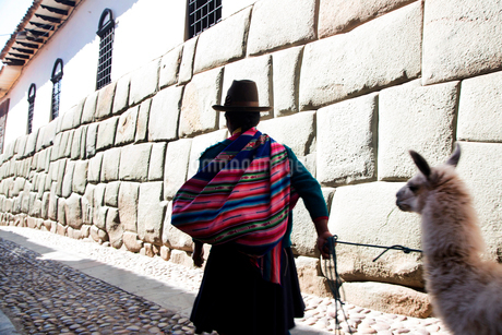 Rear view of man wearing colourful poncho and brown felt hat leading llama along cobblestone street.の写真素材 [FYI02262801]