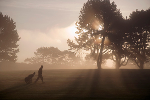 Side vie of man walking past trees across golf course at twilight, pulling golf trolley.の写真素材 [FYI02262855]