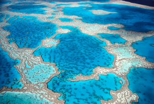 High angle view of turquoise Great Barrier Reef in the Pacific ocean, Australia.の写真素材 [FYI02262985]