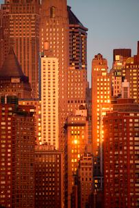 Skyscrapers illuminated by golden sunlight.の写真素材 [FYI02263020]