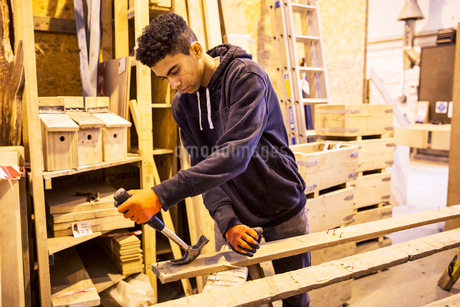 Young man wearing work gloves standing in warehouse, removing rusty nails from recycled wooden plankの写真素材 [FYI02263076]