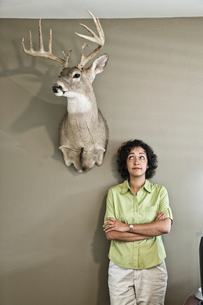 Woman in an office with a mounted deer head.の写真素材 [FYI02263208]