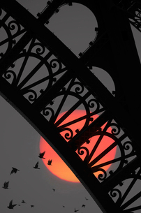 Detail of cast iron arch of Eiffel Tower, Paris, France, at night, with full moon and flock of birdsの写真素材 [FYI02263225]