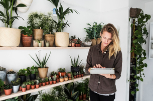 Female owner of plant shop standing next to a selection of plants on wooden shelves, holding digitalの写真素材 [FYI02263273]
