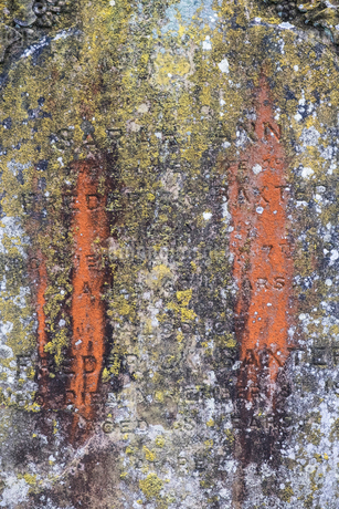 Close up of old tombstone covered in green moss and orange lichen.の写真素材 [FYI02263321]
