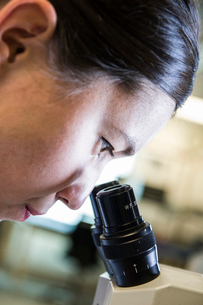 A Caucasian female technician using a microscope to examine a part in a technical research and develの写真素材 [FYI02263378]