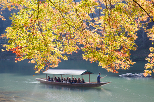 High angle view of group of people on traditional punt on a river in autumn.の写真素材 [FYI02263513]