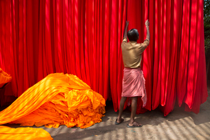 Rear view of man hanging up vibrant and bright red fabric, heap of orange fabric on floor.の写真素材 [FYI02263572]