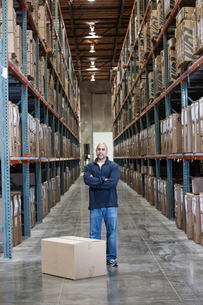 A black warehouse worker standing near boxed products in a distribution warehouse.の写真素材 [FYI02263770]