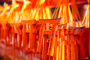 Close up of bright orange miniature Torii gates at a shop.の写真素材 [FYI02264351]