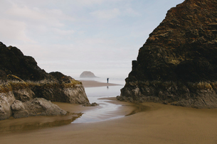 Man taking photographs on a beach at low tide, Arcadia Beach State Park, Oregonの写真素材 [FYI02264433]