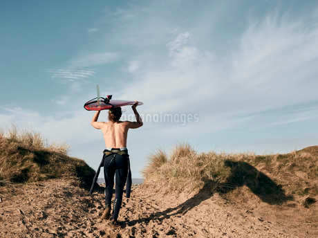 Man walking on a path in the sand dunes towards sea with surf board balancing on his headの写真素材 [FYI02264650]