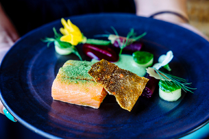 Salmon with smoked beets, cucumber, dill and zucchini blossomの写真素材 [FYI02264678]