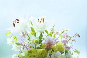 供花の写真素材 [FYI02264711]