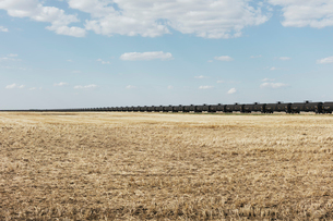 Oil train cars and fallow farmland, near Swift Current, Saskatchewan, Canada.の写真素材 [FYI02264755]