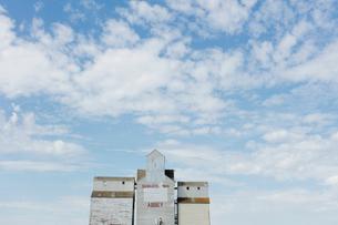 Grain elevators, near Abbey, Saskatchewan, Canada.の写真素材 [FYI02264765]