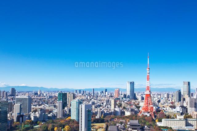 東京タワーと都心の街並の写真素材 [FYI02264799]