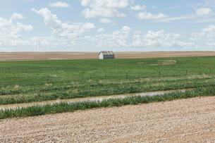 Small barn on vast open prairie, Saskatchewan, Canada.の写真素材 [FYI02264830]