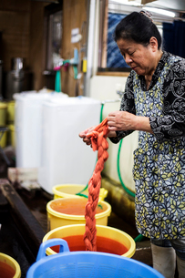 Japanese woman standing in a textile plant dye workshop, holding piece of freshly dyed bright orangeの写真素材 [FYI02264880]