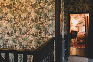 Interior view of landing with wooden banister, wallpaper with green and brown tree pattern, open dooの写真素材 [FYI02264887]