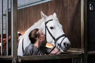 Teenage girl horse rider with a grey horse outside a stable, adjusting the girth and saddle.の写真素材 [FYI02264909]