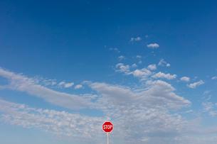 Stop sign and blue sky, near Cadillac, Saskatchewan, Canada.の写真素材 [FYI02264921]