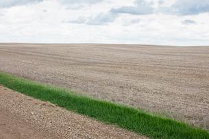 Strip of green grass and fallow farmland, Saskatchewan, Canada.の写真素材 [FYI02264924]