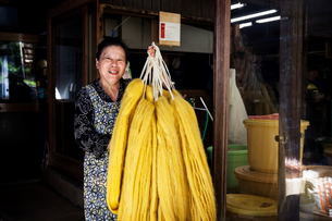 Japanese woman working in a plant dye workshop,  holding up freshly dyed bright yellow fabric.の写真素材 [FYI02265057]