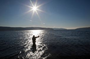 A silhouette of a fly fisherman casting for searun cutthroat trout and salmonの写真素材 [FYI02265066]