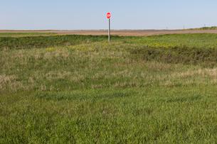 Stop sign along rural road and farm, near Cadillac, Saskatchewan, Canada.の写真素材 [FYI02265122]