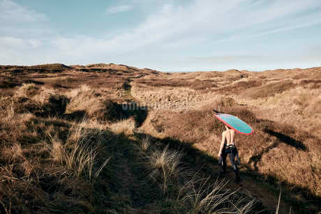Man walking on a path in the sand dunes towards sea with surf board balancing on his headの写真素材 [FYI02265184]