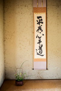 Close up of wall sign with Japanese script.の写真素材 [FYI02265254]