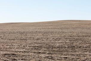 Fallow farmland, horizon and sky, near Dollard, Saskatchewan, Canada.の写真素材 [FYI02265285]