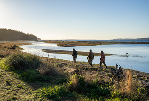Two fly fisherman and a guide walk  past a great blue heron along a salt water beach estuary while fの写真素材 [FYI02265334]