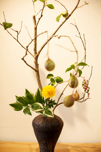 Close up of Ikebana arrangement with branches, leaves, fruit, berries and yellow flower in brown vasの写真素材 [FYI02265362]