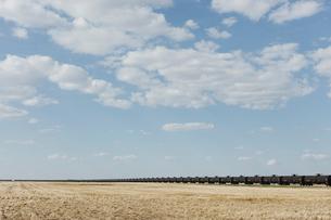 Oil train cars and fallow farmland, near Swift Current, Saskatchewan, Canada.の写真素材 [FYI02265460]