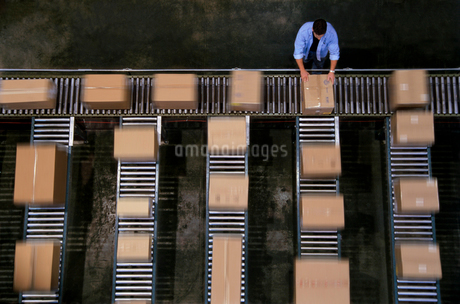 Warehouse employees organizing cardboard boxes moving on a conveyor belt in a distribution warehouseの写真素材 [FYI02265465]