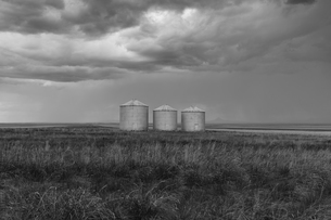 Grain silos and storm clouds over vast areas of farmland and prairie.の写真素材 [FYI02265476]