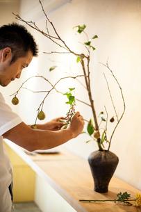 Japanese man working in a flower gallery, working on Ikebana arrangement.の写真素材 [FYI02265548]